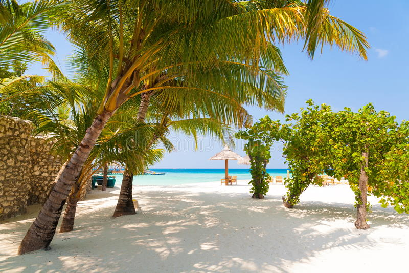 Maldives dzień tropikalny fotografia stock