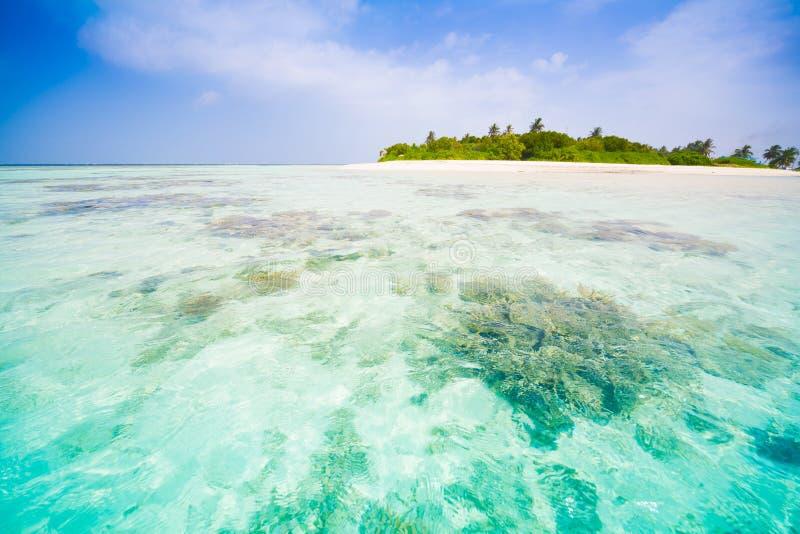 Maldives dzień tropikalny zdjęcie stock