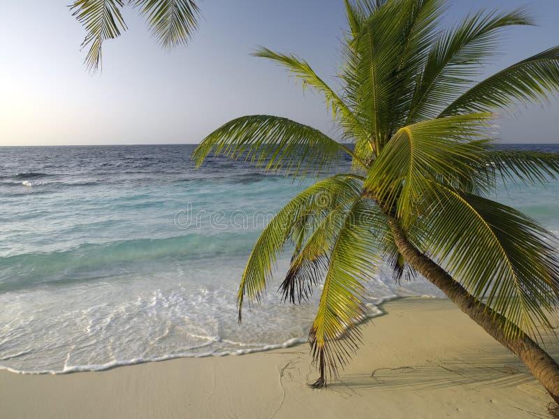 Maldives en el Océano Índico fotos de archivo libres de regalías