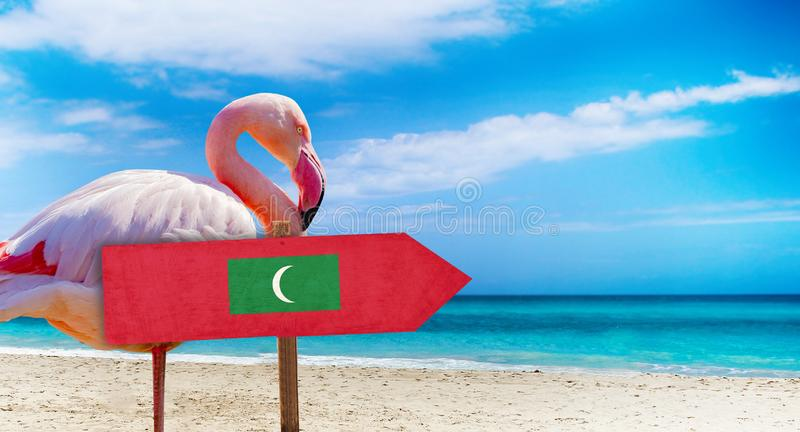 Maldives flag on wooden table sign on beach background with pink flamingo. There is beach and clear water of sea and blue sky in. The background. It is tropical stock photos