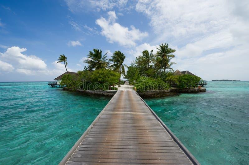 Maldives-Inselrücksortierung stockfotografie