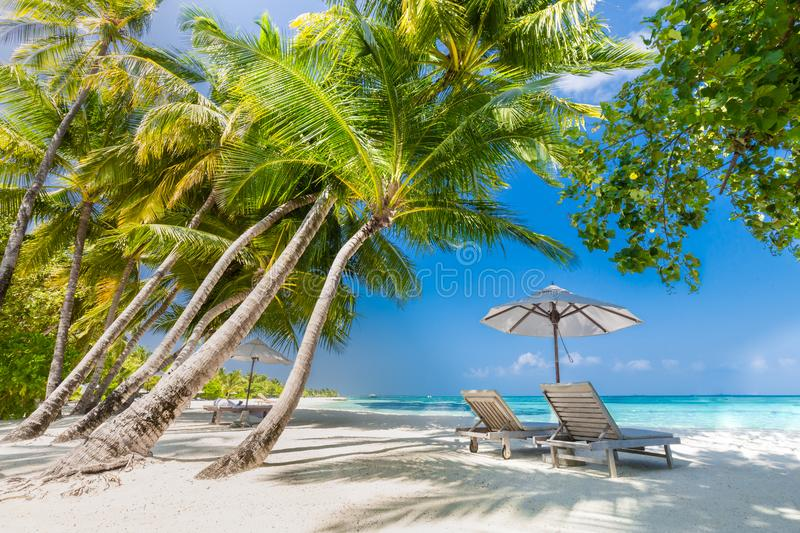 Beautiful beach. Chairs on the sandy beach near the sea. Summer holiday and vacation concept. Inspirational tropical background royalty free stock images
