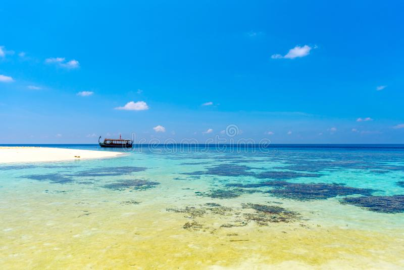 Maldives paradise sandy beach, Hangnaameedhoo, Maledives. Copy space for text.  stock image