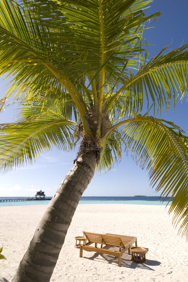 Free Maldives Seascape Stock Images - 5300794