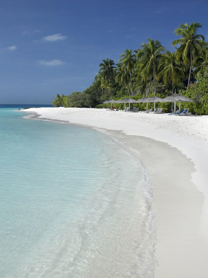 Maldives - Tropical Island