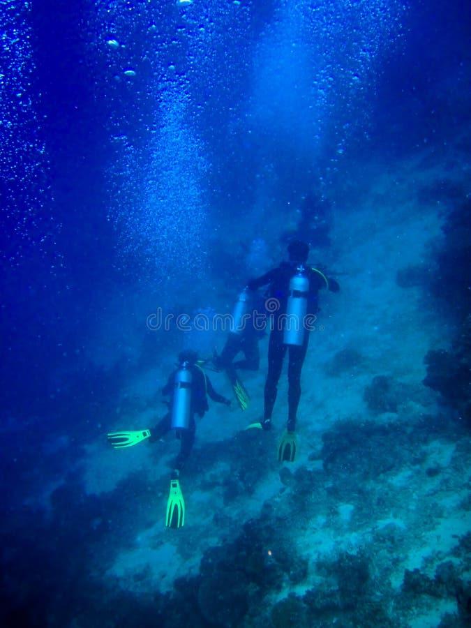 maldives under vattenvärlden fotografering för bildbyråer