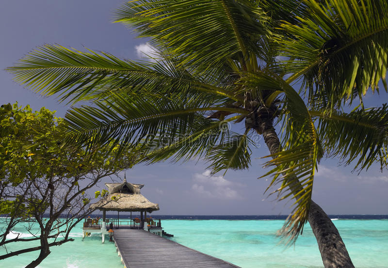Maldives - vacaciones tropicales imagen de archivo libre de regalías