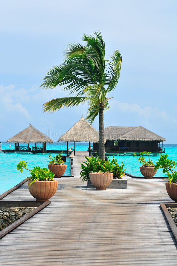 Download Maldives, Welcome To Paradise! Stock Images - Image: 5922724