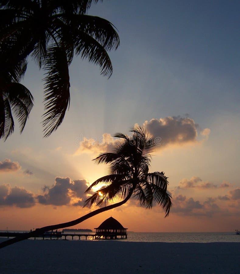 maldivian ηλιοβασίλεμα στοκ εικόνα