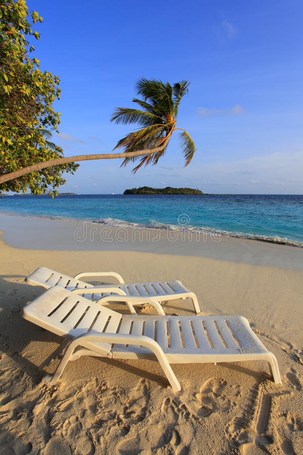 Maldivian island. Canvas chairs on the beach of maldivian island royalty free stock images