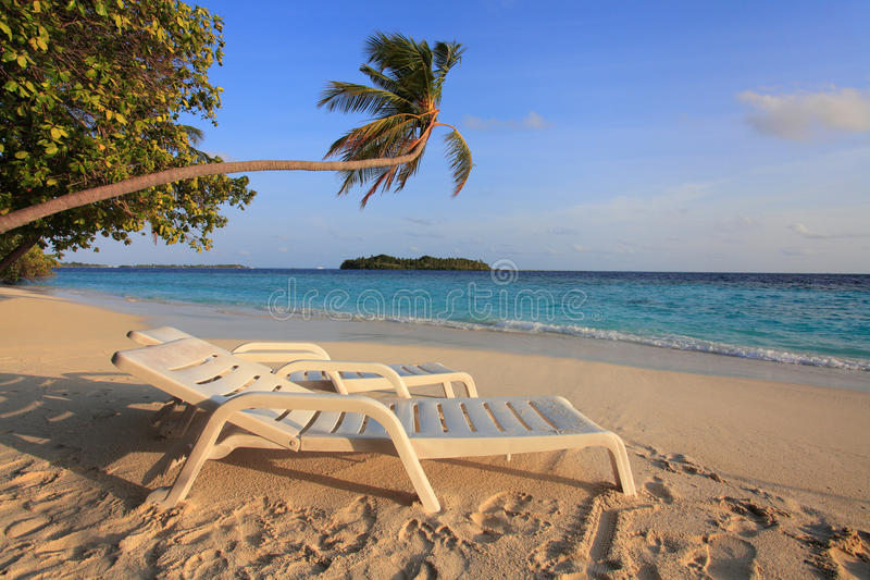 Maldivian island. Canvas chairs on the beach of maldivian island royalty free stock photos