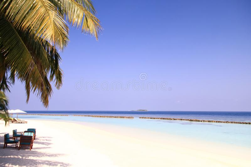 Maldivian Island Resort and Palm Trees with Pacific Ocean in the. Background stock image