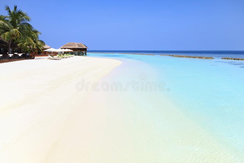 Maldivian Island Resort and Palm Trees with Pacific Ocean in the. Background royalty free stock images