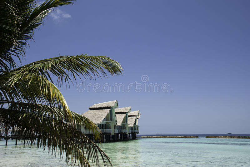 Maldivian Lagoon with Waterhuts and Palmtree stock photo