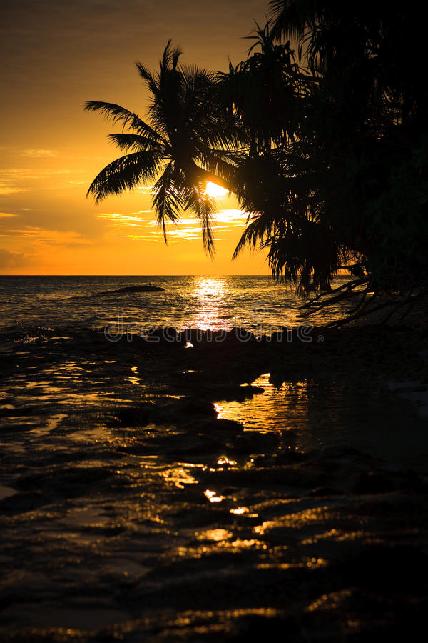 Maldivian Zonsondergang royalty-vrije stock afbeeldingen