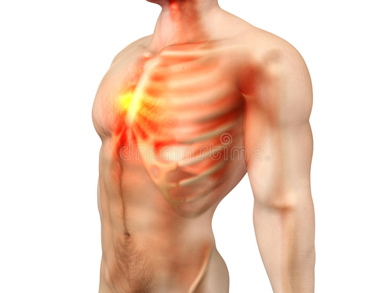 Male Anatomy - Chest Pain stock illustration. Illustration of black ...