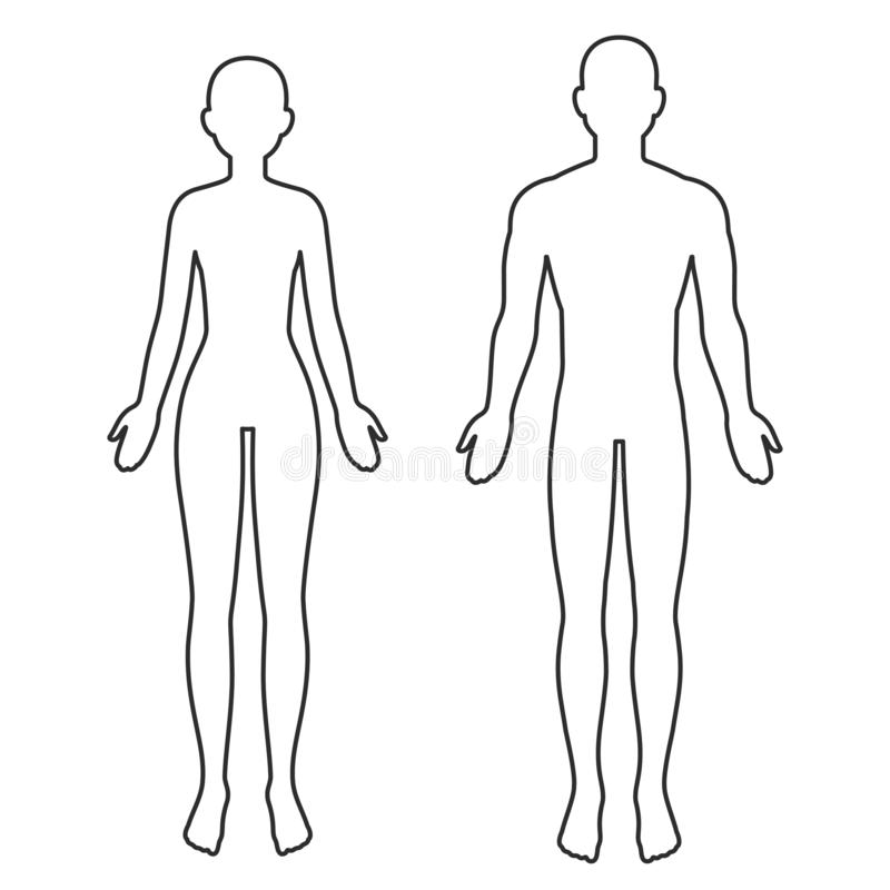 Free Male And Female Body Outline Stock Photos - 150025863