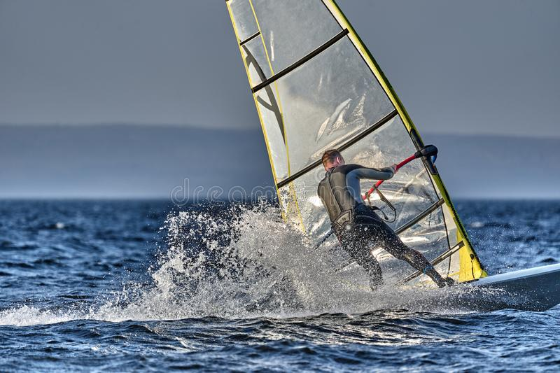 A male athlete is interested in windsurfing. He moves on a Sailboard on a large lake royalty free stock images