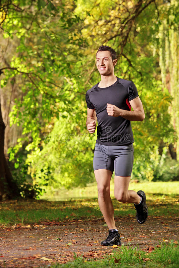 Male athlete jogging on a trail royalty free stock images