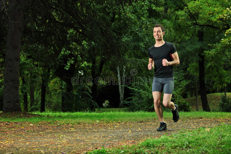 Download Male Athlete Jogging On A Trail Stock Image - Image: 16510799