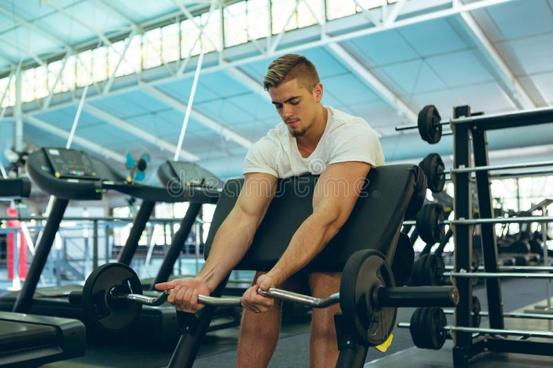 Male athletic exercising with barbell on preacher bench in fitness center stock images