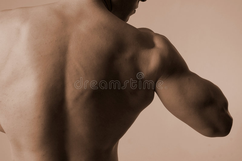 Download Male back stock image. Image of shoulders, abstraction - 454077