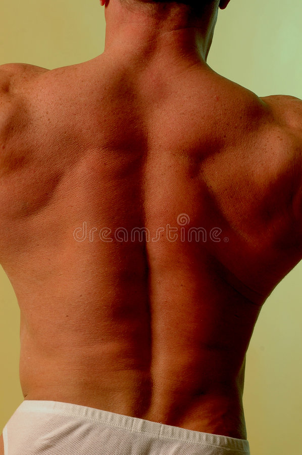 Male back royalty free stock photos
