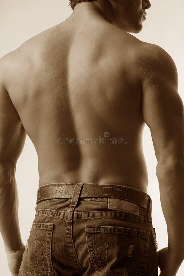 Male back in jeans