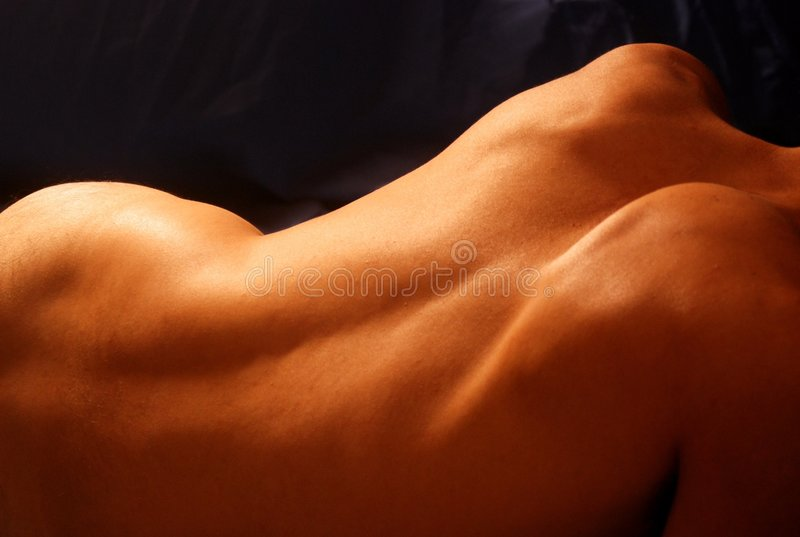 Male back and shoulders royalty free stock images