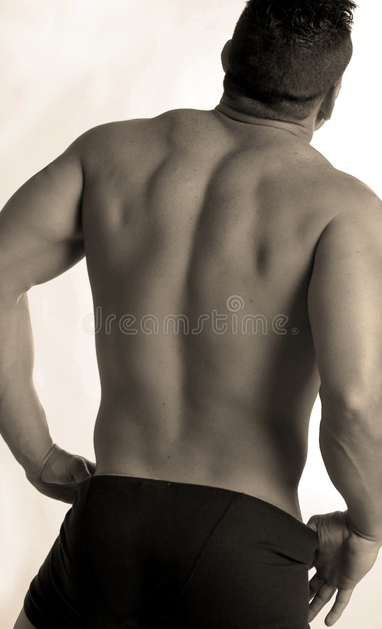 Male back2 stock photos