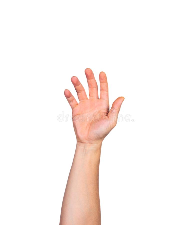 Male bare hand raising up against white background royalty free stock photo