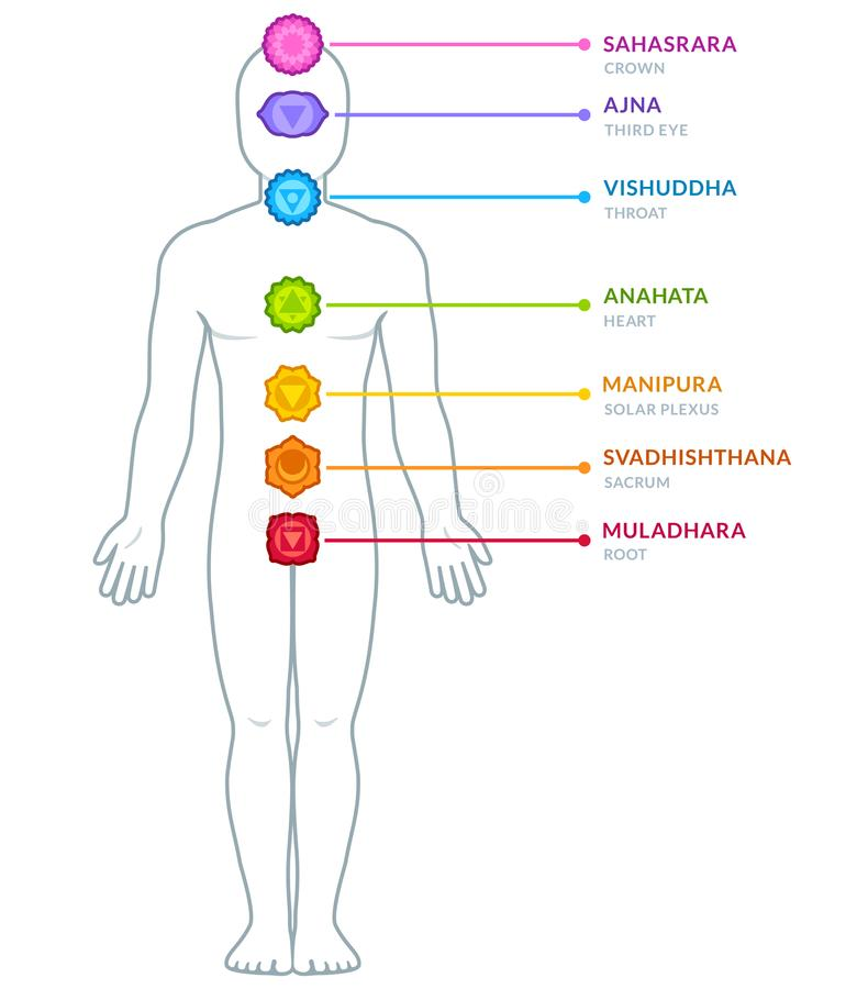 Male body chakras infographic stock illustration