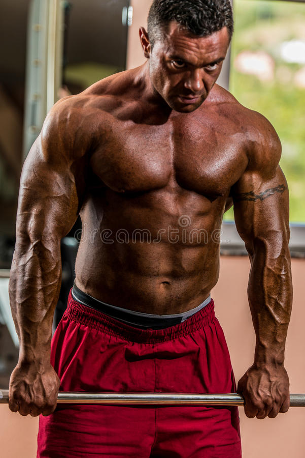 Male bodybuilder doing heavy weight exercise for trap stock photography