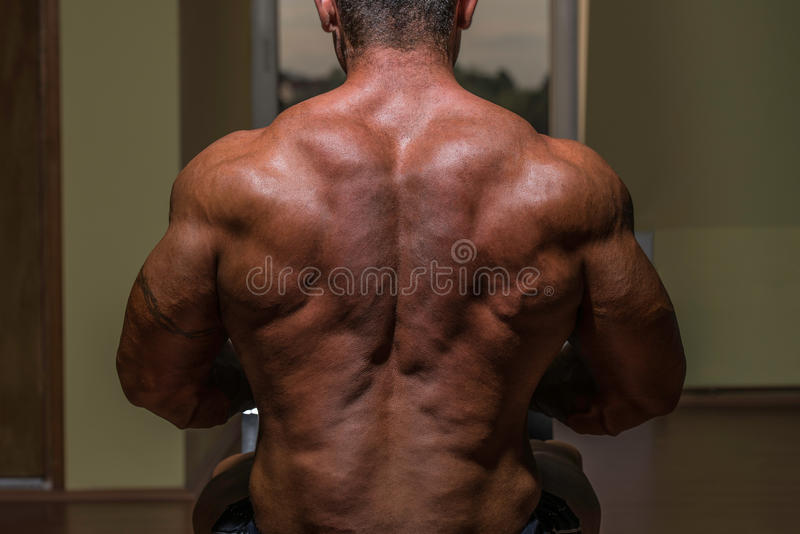 Male bodybuilder flexing his back royalty free stock photography