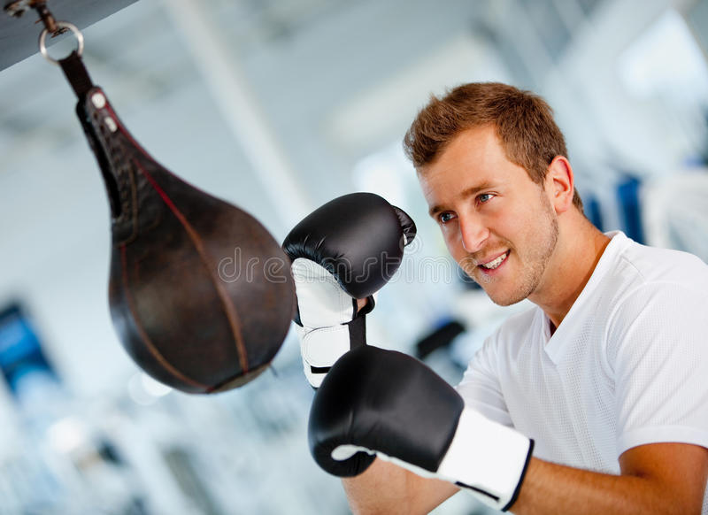 Download Male boxer stock photo. Image of fitness, punching, athletic - 21650958