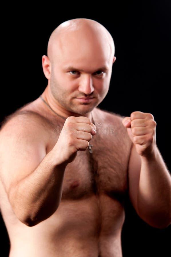 Male Boxer Stock Image