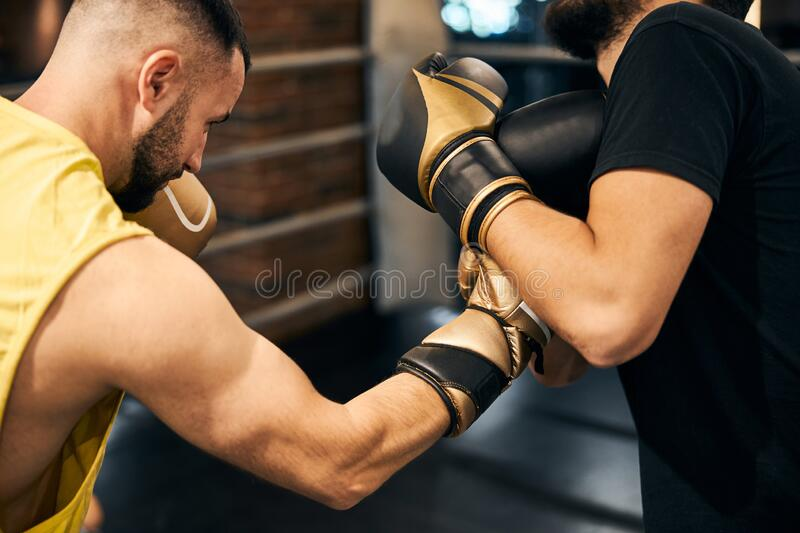https://thumbs.dreamstime.com/b/male-boxer-attacking-opponent-right-hook-cropped-photo-muscular-fighter-punching-his-partner-right-hand-197724749.jpg