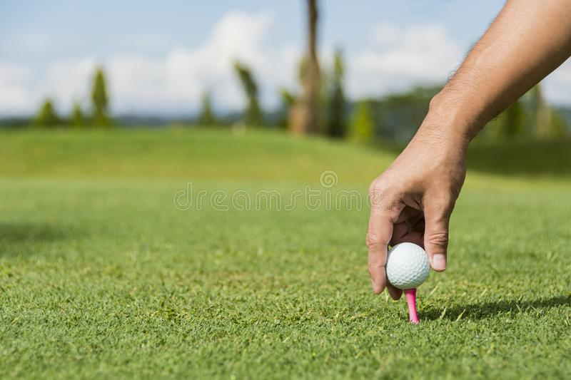 Male Caddie royalty free stock photos