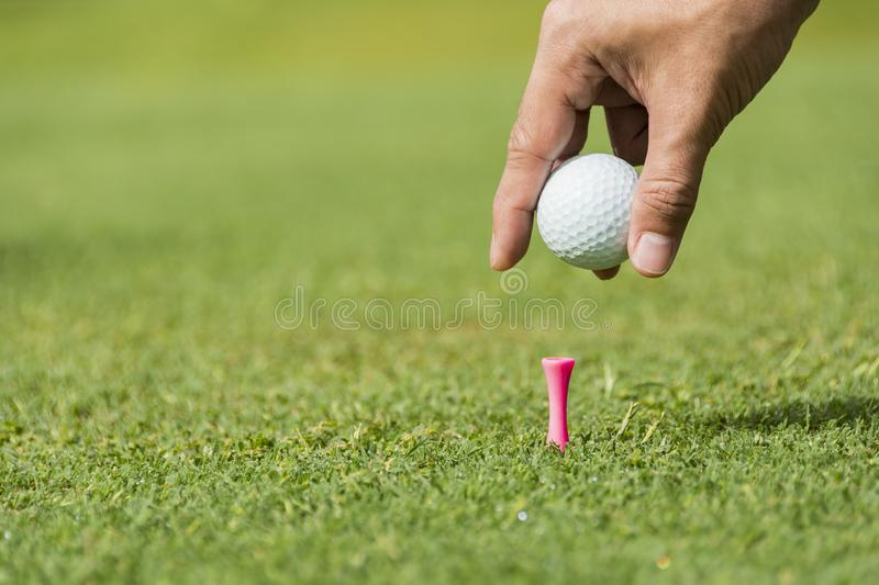 Male Caddie royalty free stock images