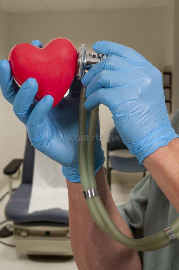 Male Cardiologist arkivfoton