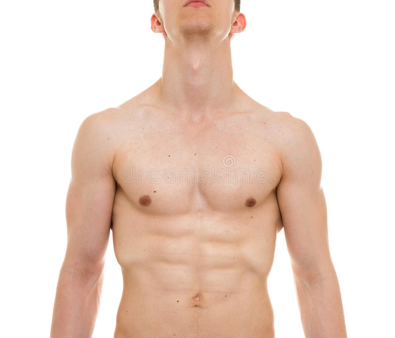 Male Chest Anatomy - Man Muscles Front View stock photo