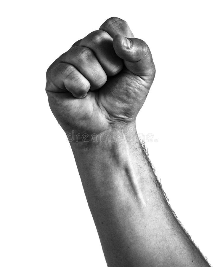 Male clenched fist, isolated on a white background stock image