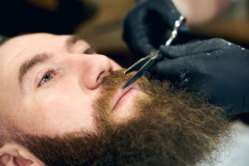 Male client with beard sitting in hairdresser chair. Serious man with long brown beard. Modern popular lumberjack style. royalty free stock photo