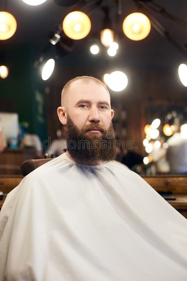 Male client with beard sitting in hairdresser chair. Serious man with long brown beard. Modern popular lumberjack style. Portrait of male brutal client with royalty free stock photos