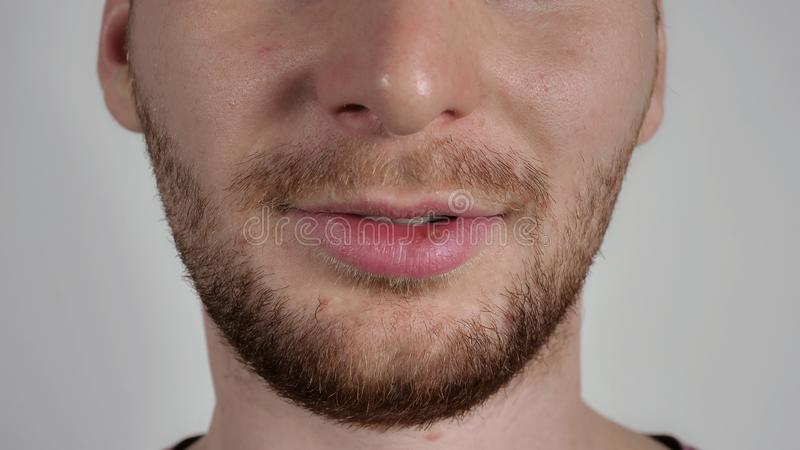 Male details closeup mouth and chin royalty free stock images