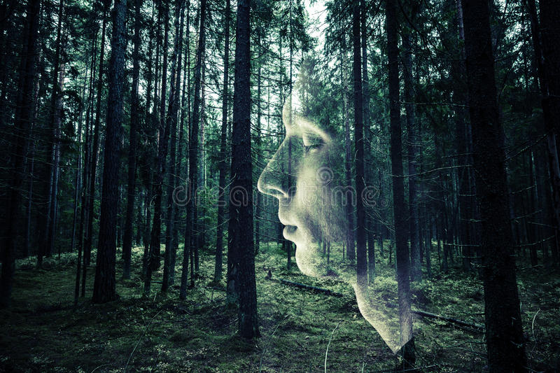 Male face profile over dark green forest background royalty free stock photo