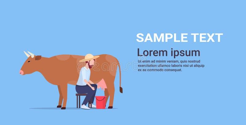 Male farmer milking cow in bucket farm domestic animal cattle eco farming breeding concept flat horizontal copy space. Vector illustration royalty free illustration