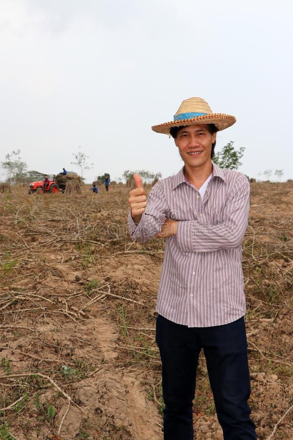 Male farmer standing and thumbs up in the cassava farm stock photos