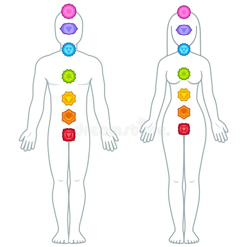 Male and female body chakras infographic royalty free illustration