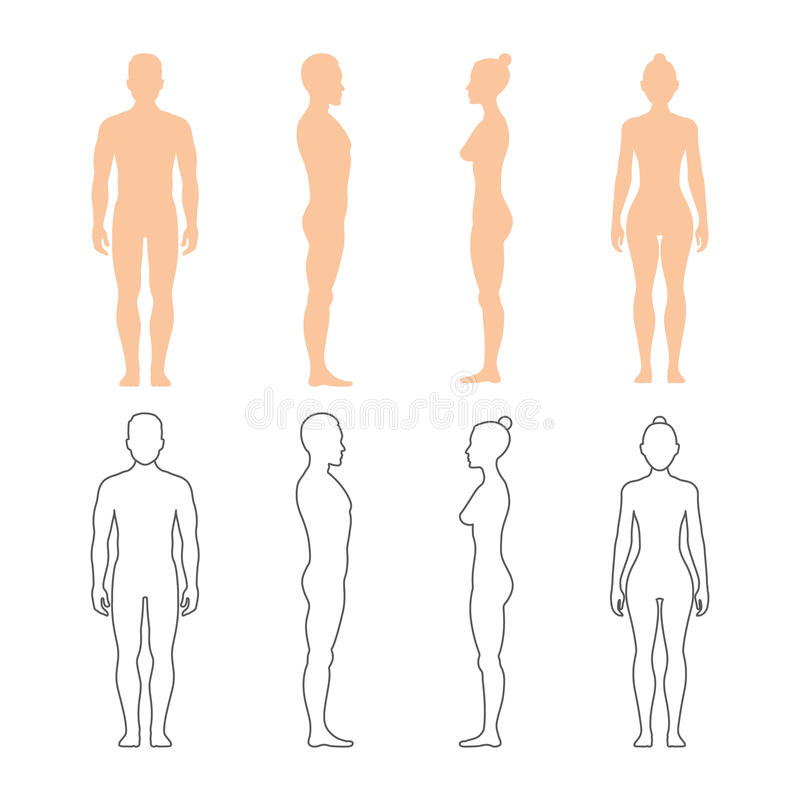 Male and female human vector silhouettes stock illustration